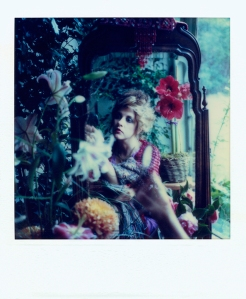 from stevie nicks' new collection of polaroids.