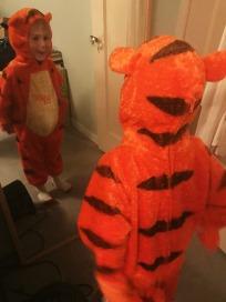 my tiger.