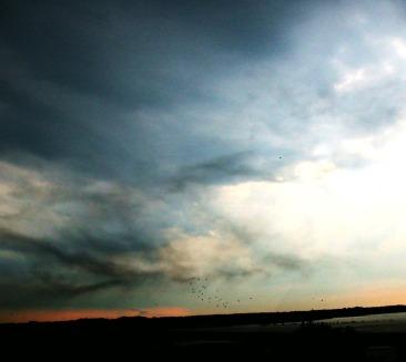 mississippi river, arkansas. 2008.